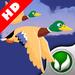 Duck Hunter HD